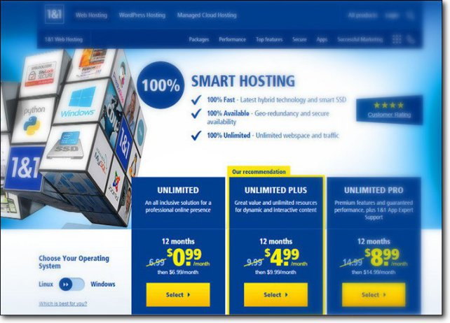 1and1 1 dollar web hosting